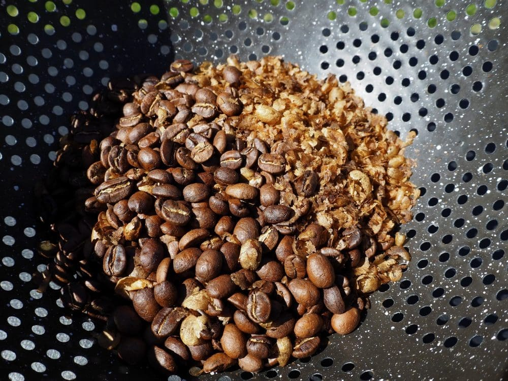 Roasted beans and chaff in colander