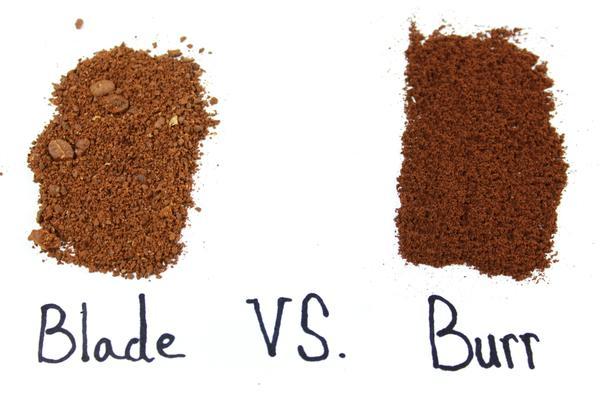 blade vs burr grinder results