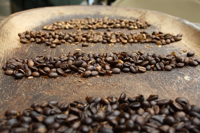 coffee bean on a tray