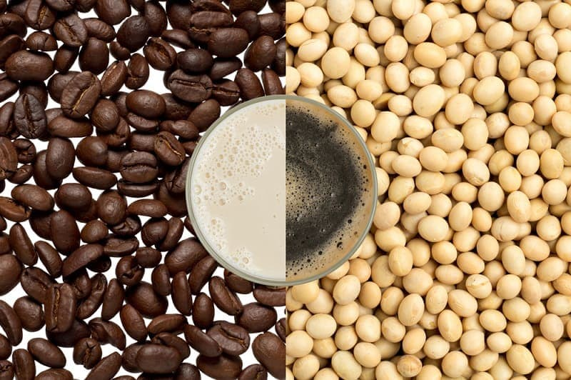 haft cup of coffee and soy milk on coffee beans and soy bean_sumeto_shutterstock