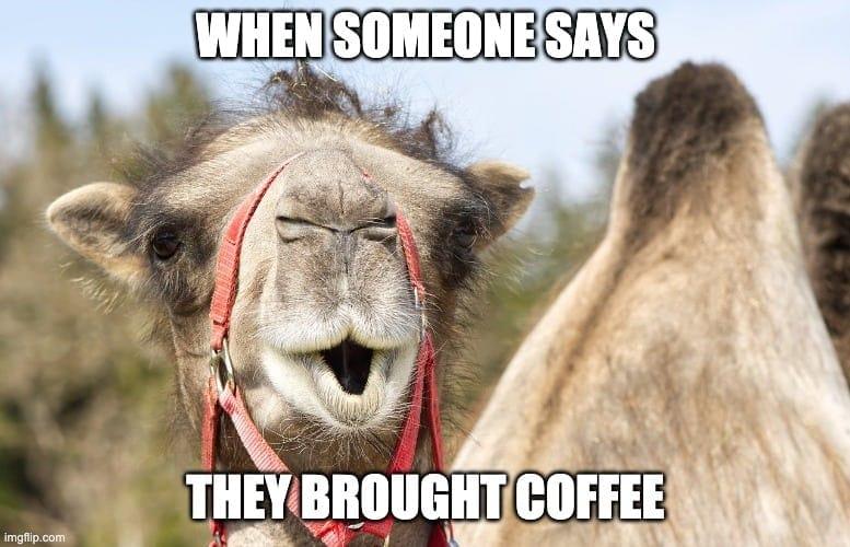 wednesday coffee memes