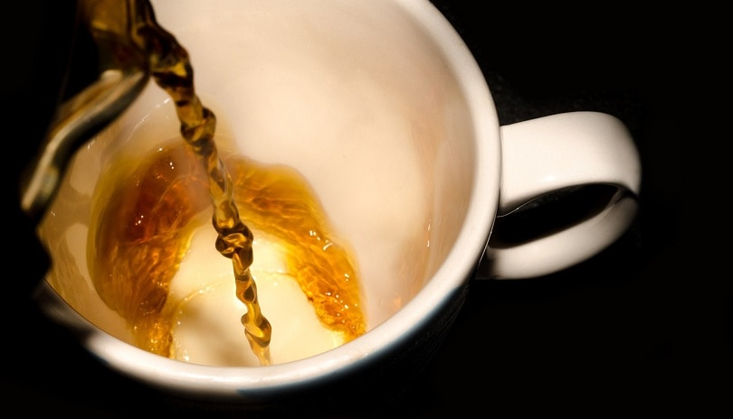 coffee-poured-pixabay