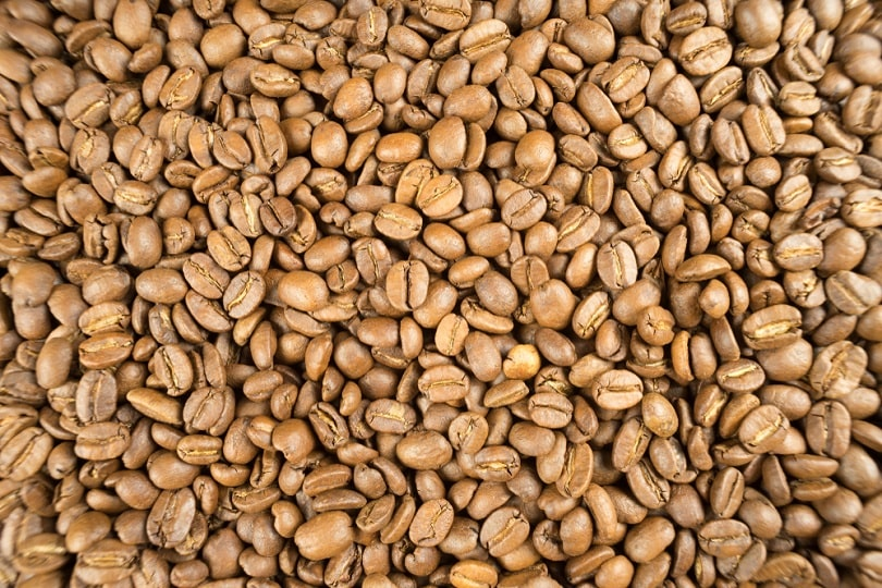 Lightly-roasted-brown-coffee-beans_RuPhoto_shutterstock