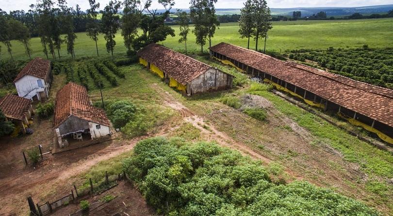 کافه-مزرعه-مزرعه-در-برزیل_ranimiro_shutterstock