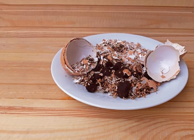 EggshEggshells-with-coffee-lludge_Gheorghe-Mindru_shutterstockells-with-coffee-lludge_Gheorghe-Mindru_shutterstock