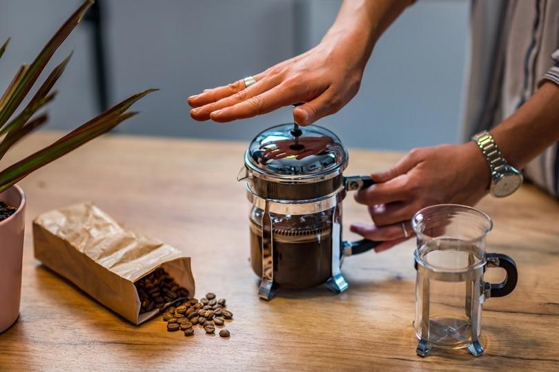 French-press-coffee_Microgen_shutterstock