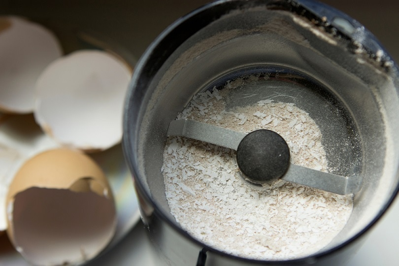 چرخاندن پوسته تخم مرغ به قهوه برقی_Bela-zamsha_shutterstock