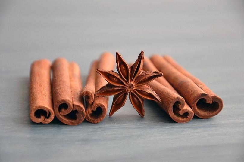 cinnamon-spice-pixabay