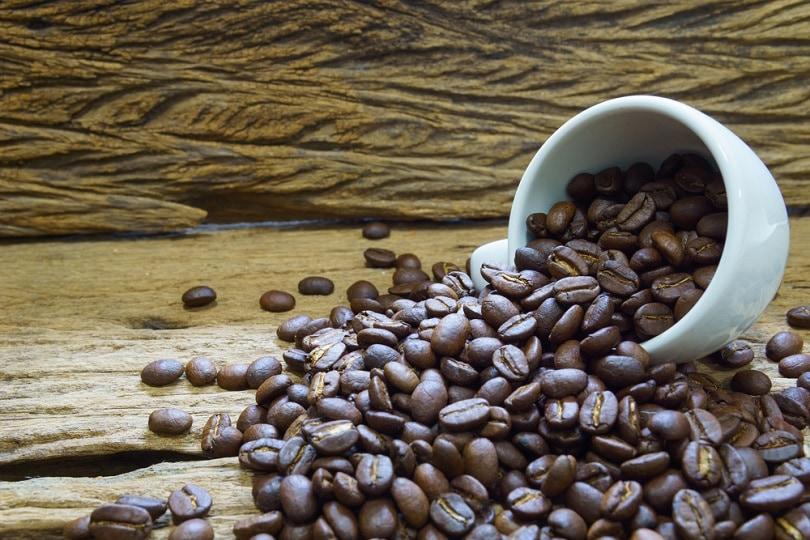 دانه های قهوه بو داده متوسط تا تیره_yanadhom_shutterstock