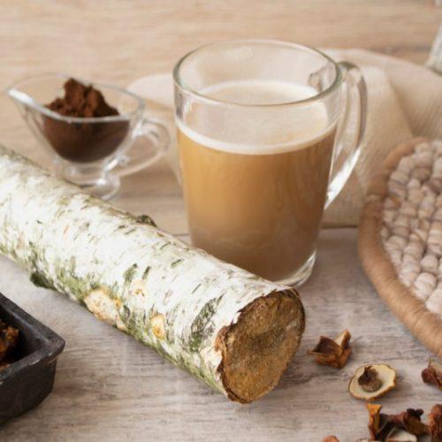 قهوه قارچ چاگاچینو با شاخه توس