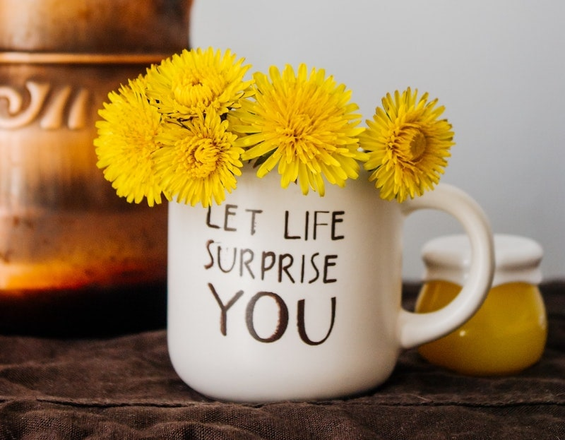 گل های قاصدک در یک فنجان