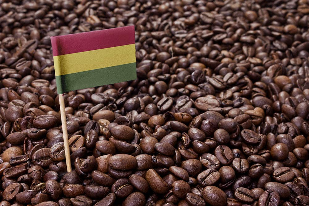 Bolivia flag in coffee beans