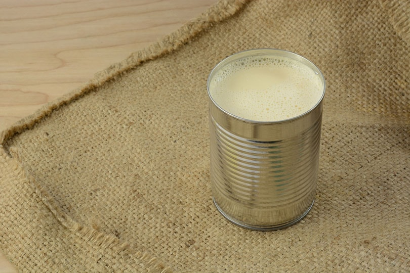 an open can of full of evaporated on burlap