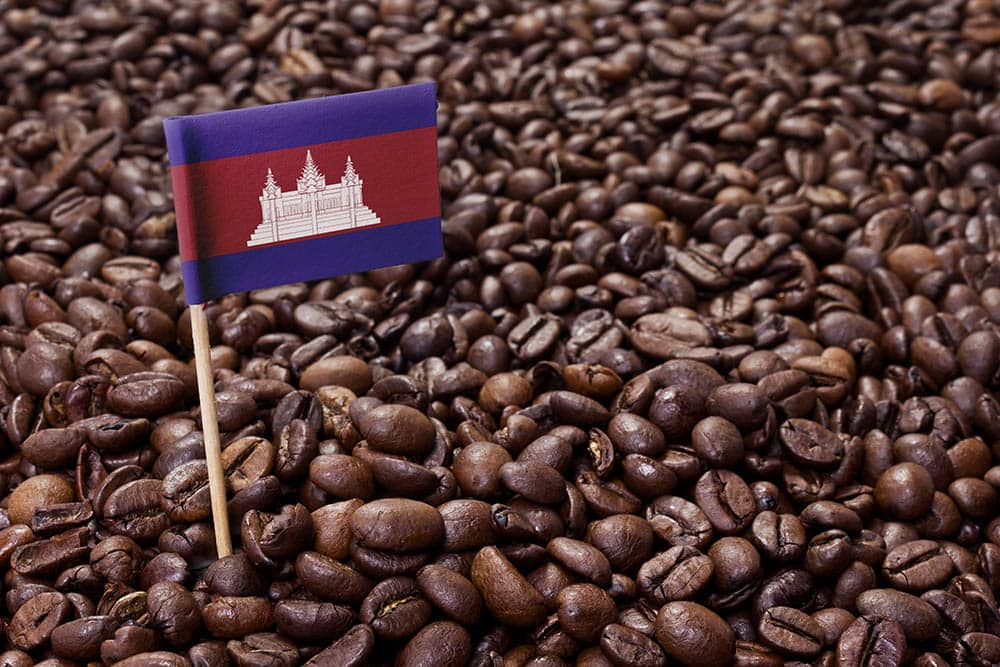 cambodia flag in coffee beans