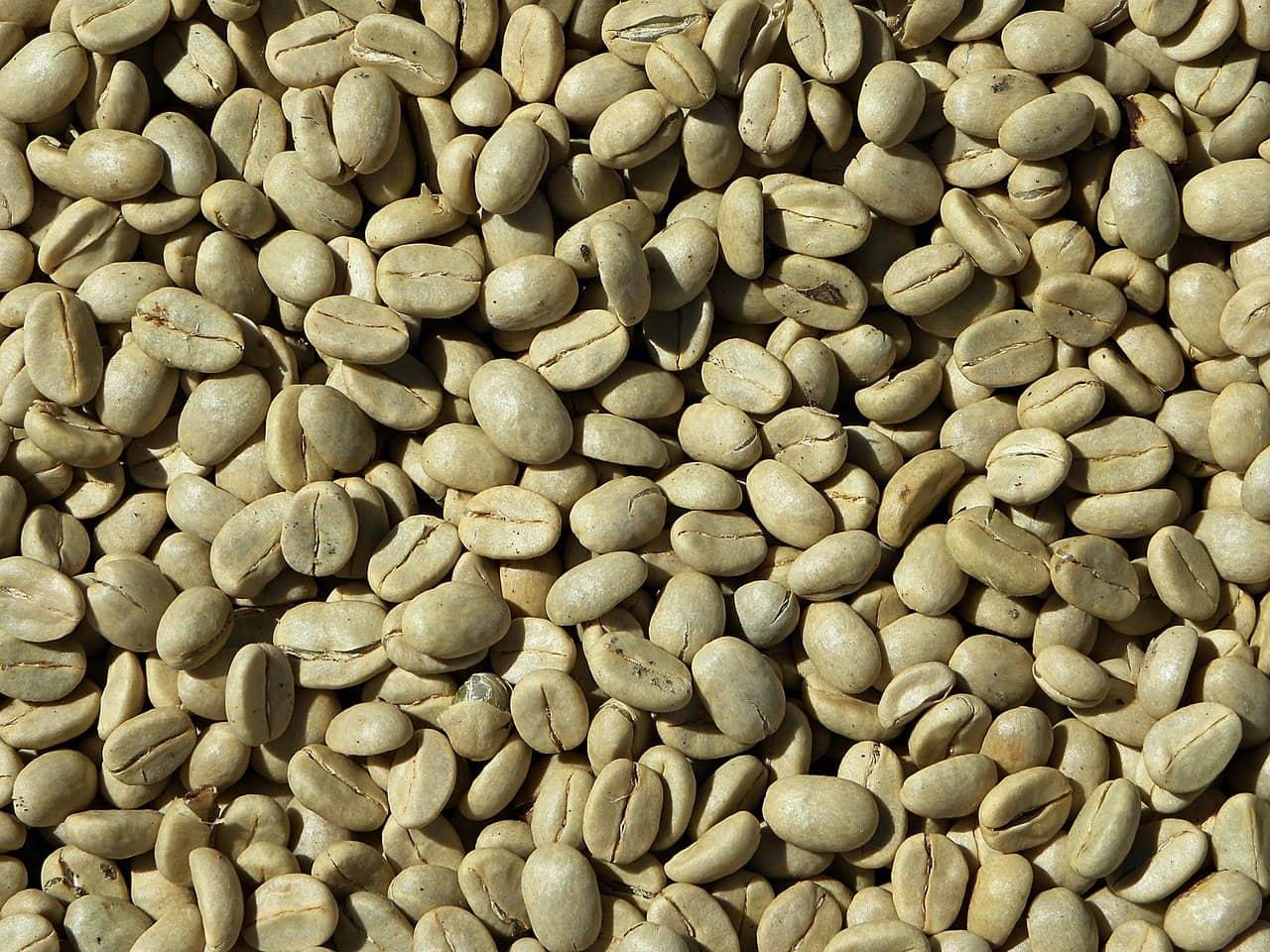دانه های قهوه سبز