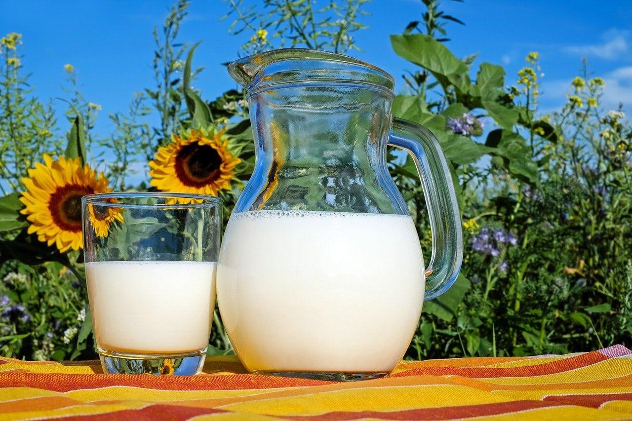 کوزه و یک لیوان شیر