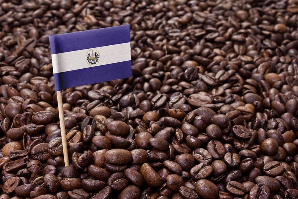 El Salvador coffee beans