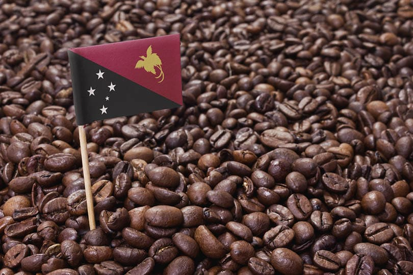 flag of Papua New Guinea sticking in roasted coffee beans